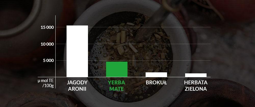 Kwas chlorogenowy w yerba mate